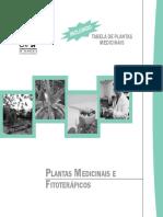 Plantas Medicinais e FitoteraPicos