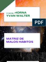 Matriz de Malos Hábitos - Ruiz Horna Yvan Walter