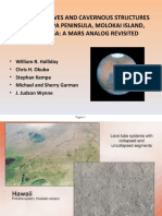 Mars Analog