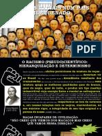 QUESTÃO RACIAL II