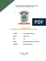 154331421 Practica 9 Num Hongos Levaduras