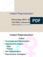 Insect_Reproduction