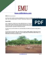 EMU_Highlights