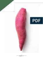 Batata-doce de Aljezur Avaliação Fertilidade dos Solos