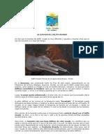 La Leyenda del Delfín Rosado[1]