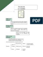 Tema 5 - Los esquemas - Teoría