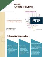 Principios de Educacion Holista