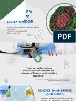 PCM2 2021-1 05 - Reações em Ambientes Confinados - Larissa Dias (1)