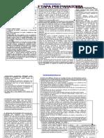 esquema del proceso penal word