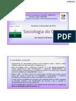 A Sociologia Do Corpo_discussões