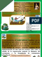 DIAPOSITIVAS DE IMPACTO