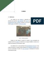 Ensayo_de_Caldera_y_tratamiento_de_agua_de_caldera