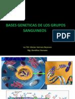 Bases Geneticas de Los Grupos Sanguineos