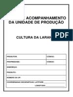 Livro de Acompanhamento _ LARANJA