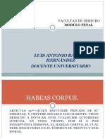 1 4 Habeas Corpus
