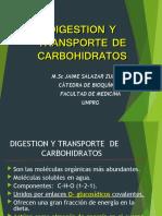 Digestion y Transporte de Carbohidratos