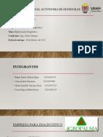 empresa diagnósstico datos (2)