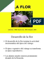 9. LA FLOR (1)