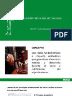 DIAPOSITIVAS - PRINCIPIOS DEL JUICIO ORAL (1)