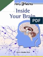 Inside_Your_Brain
