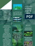 Verde Blanco Planta Foto Spa Tríptico Folleto