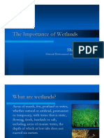 Importance_of_Wetlands