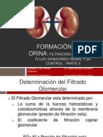 Filtracion Glomerual y Flujo Sanguineo y Su Control