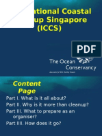 ICCS Briefing-Aug2007