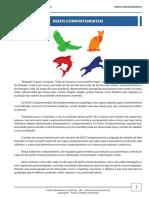 FERRAMENTA - PERFIL COMPORTAMENTAL teste-1-6