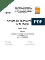 rapport de stage IAP