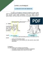 Chapitre II Rappel Anatomique Region Sous Hyoidienne