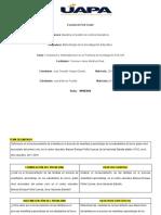 Formulacion y Sistetematizacion