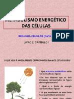 metabolismoenergticodasclulas-121005091902-phpapp01