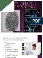 DNA Fingerprinting Project