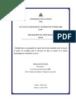 IDENTIFICATICATION ET CARTOGRAPHIE DES ENJEUX DANS LA ZONE INONDABLE (COMMUNE DE CAVAILLON, SUD D'HAITI)