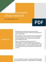 Asociación de Cultivos en Huerta Urbana Medicinal