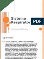 Sistema Respiratório 2