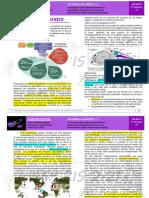 B-R3-10-P - TOXOPLASMA GONDII-20-07-21
