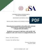 Tesi_Nicola_Pellegrin_PDF