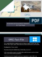 Tejas OPEC 2003