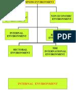 Internal+Environment