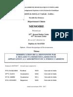 memoire_final_M2_Option-Chimie_Inorganique_&_Environnement
