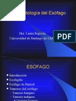 esofago1_2007