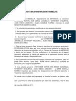 Acta de Constitucion Home Live 22