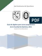 Guia_de_algebra