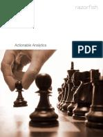 RazorFish Analytics Report