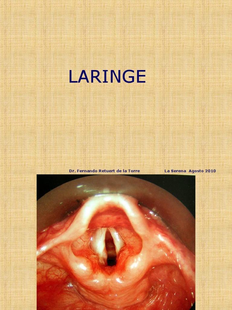 17. Patologia de la Laringe