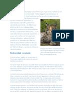 biodivercidad,especies endemicas y especies en peligro de extincion