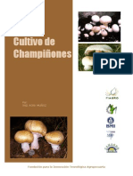 Cultivo de Champiñones