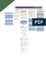 Clasificación de empresas (mapa conceptual)